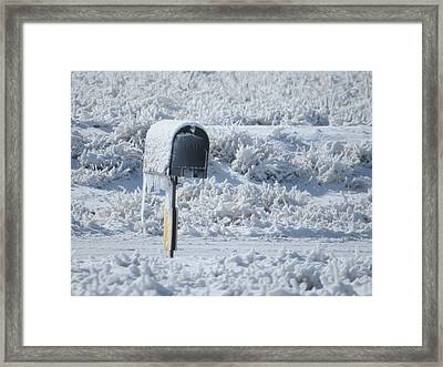 Frozen Mail Box Framed Print by Suzy Pal Powell