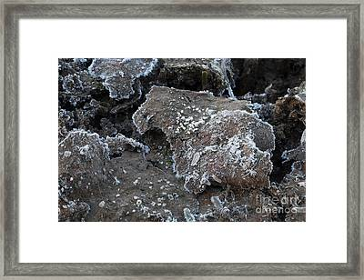 Frozen Mud Framed Print by Marianne Jensen