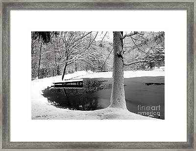 Frozen Pond 2014 Framed Print