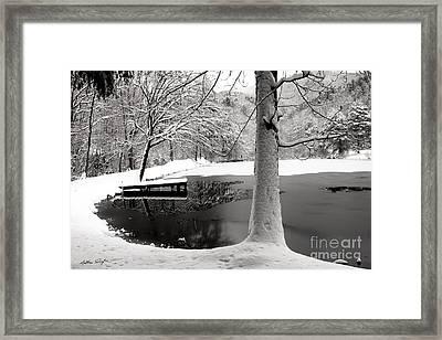 Frozen Pond 2014 Framed Print