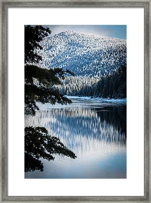 Frozen Reflection Framed Print by Jan Davies