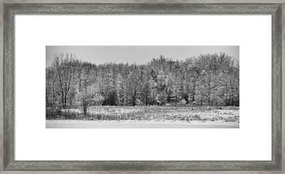 Frozen Framed Print by Sebastian Musial