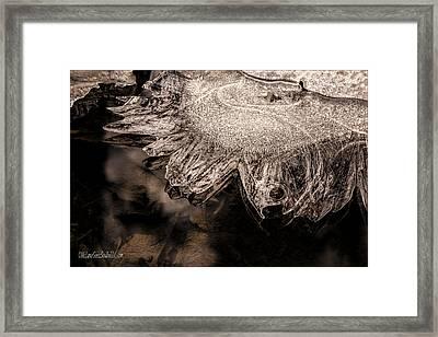 Frozen Sun Framed Print by LeeAnn McLaneGoetz McLaneGoetzStudioLLCcom