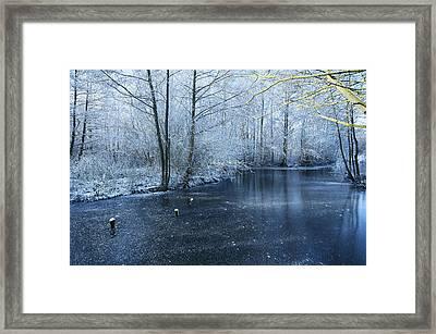 Frozen Framed Print by Svetlana Sewell