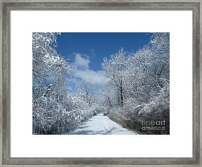 Frozen  Framed Print