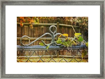 Frozen To The Gate Framed Print