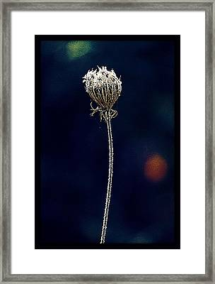 Framed Print featuring the photograph Frozen Warmth by Melanie Lankford Photography