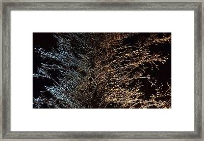 Framed Print featuring the photograph Frozen Wonder  by Anthony Fishburne