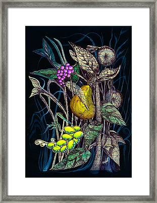 Fruit And Weeds Framed Print by Adria Trail