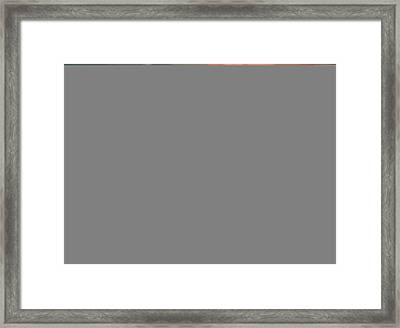 Fruit And Wine Framed Print by Jessica Sanders