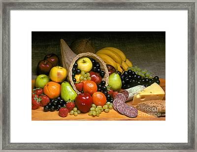 Fruit Cornucopia  Framed Print