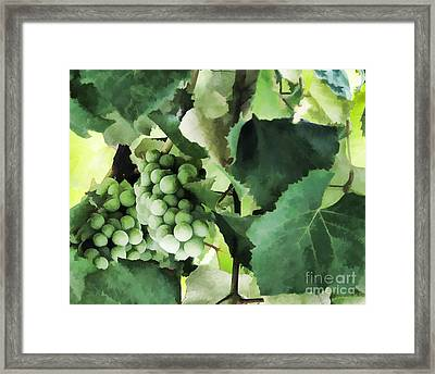 Fruit - Fruit Of The Vine - Luther Fine Art Framed Print by Luther Fine Art