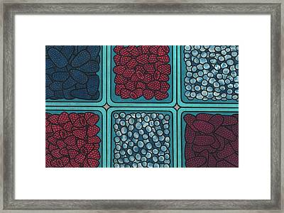 Fruit Framed Print by Lesley Rutherford