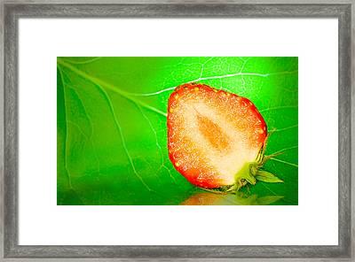 Fruit Of Rainy Summer Framed Print by Janne Mankinen