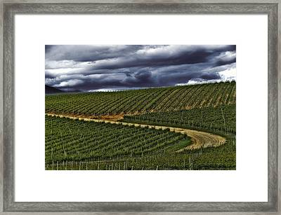 Fruit Of The God's Framed Print by Thomas Born