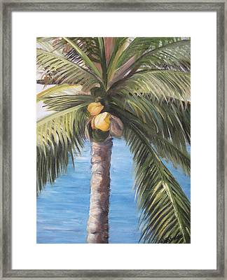 Fruit Of The Palm Framed Print