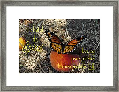 Fruit Of The Spirit Framed Print by Robyn Stacey