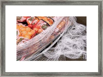 Fruit Pallet Framed Print