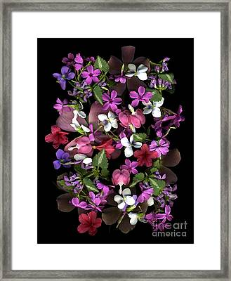 Fruit Salad Framed Print by Dale Hoopingarner