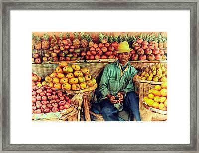 Fruit Seller Framed Print by Heidi Yanulis