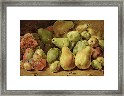Fruit Still Life Framed Print by Johann Friedrich August Tischbein