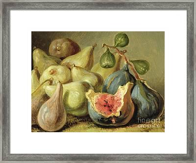 Fruit Still Life Framed Print