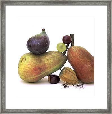 Fruit Variety Framed Print by Bernard Jaubert