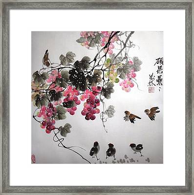 Fruitfull Size 4 Framed Print by Mao Lin Wang