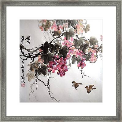 Fruitfull Size 5 Framed Print by Mao Lin Wang