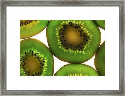 Fruitopia  Framed Print