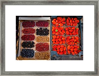 Fruits And Berries Framed Print by Tim Holt