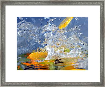 Fruits And Water Framed Print by Sinisa Botas