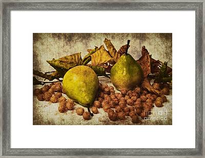 Autumn Still Life Framed Print by Angela Doelling AD DESIGN Photo and PhotoArt