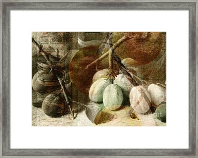 Fruits Background Framed Print