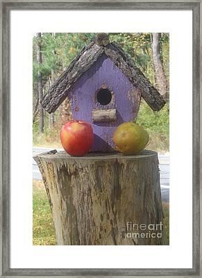 Fruity Home? Framed Print by Christina Verdgeline