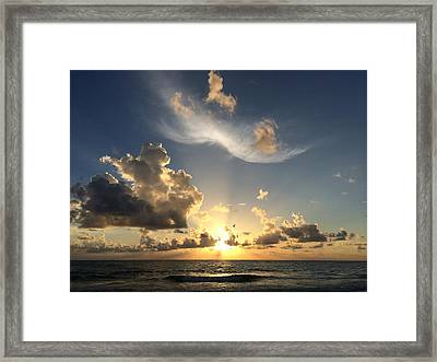 Ft. De Soto Sunset Soar Framed Print