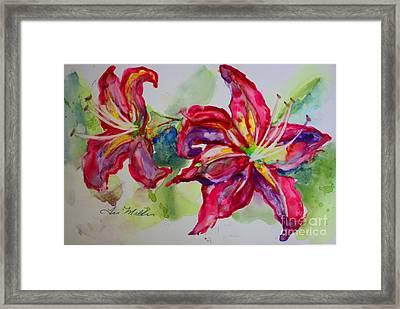 Fuchsia Lilies Framed Print by Terri Maddin-Miller