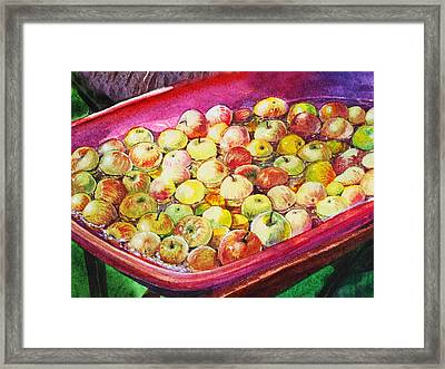 Fuji Apples In The Water Framed Print by Irina Sztukowski
