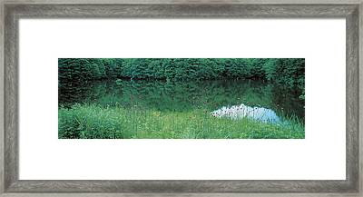 Fukushima Japan Framed Print by Panoramic Images