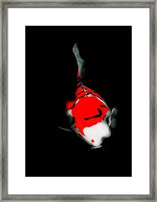 Fukushima1 Framed Print