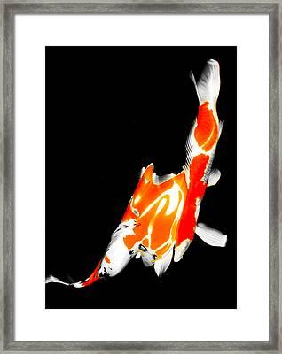 Fukushima5 Framed Print