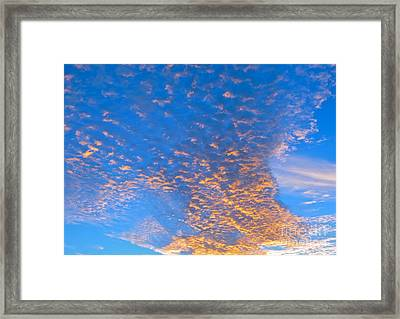 Framed Print featuring the photograph Fulgent Funneling by Joy Hardee