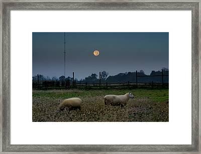 Full Moon At Erdenheim Farm Framed Print by Bill Cannon