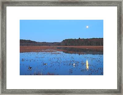 Full Moon At Great Meadows National Wildlife Refuge Framed Print by John Burk