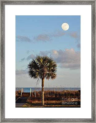Full Moon At Myrtle Beach State Park Framed Print by Kathy Baccari