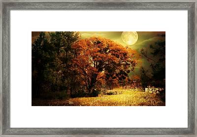 Full Moon Oak Framed Print