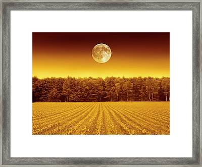 Full Moon Over A Field Framed Print by Detlev Van Ravenswaay