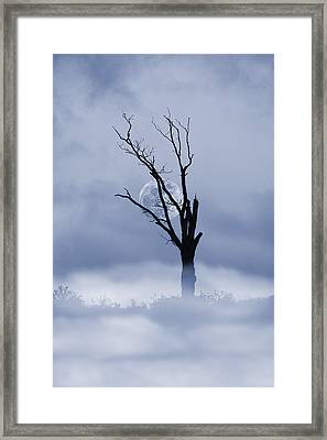 Full Moon Rising Framed Print by David Simons