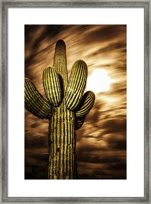 Framed Print featuring the photograph Full Moon Saguaro by Anthony Citro