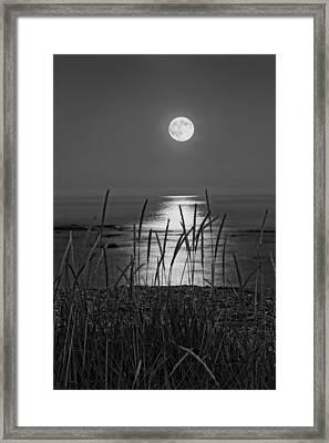 Full Moon Seawall Beach Acadia National Park Framed Print